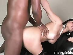 X-rated shemale nightfall darkness Ana Paula Samandat interracial anal