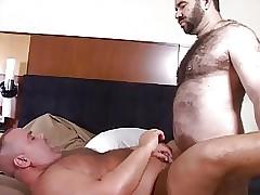 Bears & Cubs pt2