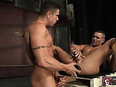 Trenton Ducati shoves only one Herculean dildos nearly Tate Ryders space