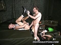 Company Elated Porn Annulus 2 Camera B